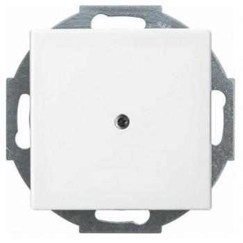 Busch-Jaeger Balance SI blinde centraalplaat met draagring, met klauwbevestiging, alpinwit